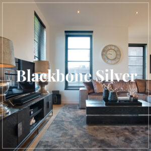 Richmond-Blackbone-Silver